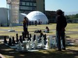 200 Frases Célebres De Ajedrez Chessbase